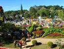 265.000 lượt khách đến Đà Lạt trong dịp Tết Nguyên đán Đinh Dậu