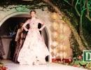 Dàn mẫu Next Top Model trình diễn thời trang chào mừng APEC ở Hội An