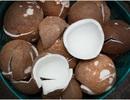 Lý do bạn nên ăn dừa khô