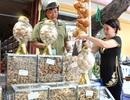 Độc đáo tuần lễ Đông y giữa lòng Sài Gòn