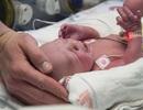 Hành trình em bé Mỹ đầu tiên chào đời từ tử cung cấy ghép