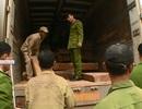 Lô gỗ đinh hương trị giá gần 4 tỷ đồng ngụy trang trong xe chở nông sản