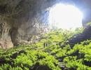 """Đưa 3 hang động ở """"vương quốc hang động"""" Phong Nha vào khai thác"""