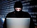 Công ty giúp FBI hack iPhone bị... hacker lấy cắp 900GB dữ liệu