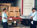 """Chậm thông quan, thương mại Việt Nam """"mất không"""" 1,2 tỷ USD/năm"""