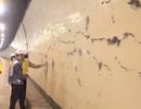 Hầm Hải Vân bị nứt: Không nghiêm trọng, không nguy hiểm?
