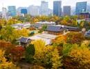 Đốn tin cùng ngày hội xứ Hàn