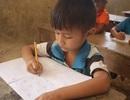 Quảng Ngãi: Hỗ trợ dạy tiếng Việt cho học sinh tại các tỉnh Nam Lào