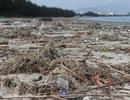 """Hàng chục tấn rác """"tấn công"""" bờ biển Đà Nẵng"""