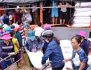 Cấp phát 200 tấn gạo Chính phủ hỗ trợ người dân bị bão lụt