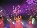 Hàng nghìn người chen chân vào Lễ hội hoa anh đào Nhật Bản 2017