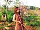 Nữ Phó Giám đốc Sở bẻ hoa tại Đà Lạt xin lỗi công khai trên báo
