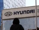 Mỹ điều tra quy trình triệu hồi xe của Hyundai và Kia