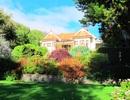 New Zealand - Những mùa hoa bỏ lại
