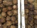 Hoảng hồn vì hơn 240 quả bom bi đã tách vỏ dưới ruộng lúa