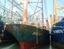 """Vụ tàu vỏ thép hư hỏng ở Bình Định: """"Đừng lợi dụng lòng tốt của dân mà làm ăn thiếu đạo đức"""""""
