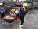 Ngư dân bội thu mùa ruốc đầu năm