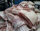 Phát hiện hàng tấn thịt heo bốc mùi hôi thối chuẩn bị mang đi tiêu thụ