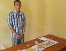 Bắt nghi phạm đột nhập vào tiệm vàng trộm gần 15 lượng vàng
