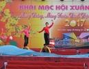 Bạc Liêu khai mạc Hội Xuân Đinh Dậu 2017