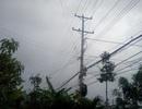 Trực 24/24h để ứng phó bão Kai-tak