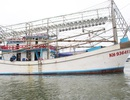 Người đàn ông sở hữu đội tàu gần chục chiếc đánh bắt ở Trường Sa