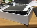 Thêm một sản phẩm bị bung màn hình, điều gì đang xảy ra với iPhone 8 Plus?