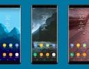 Galaxy Note 8 lộ ảnh viền siêu mỏng, ra mắt vào cuối tháng 8