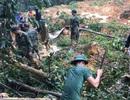 Thủ tướng yêu cầu cả hệ thống chính trị vào cuộc hỗ trợ đồng bào bão lũ