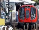 IS nhận trách nhiệm vụ đánh bom tự chế trên tàu điện ngầm London
