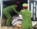Bắt giữ và tiêu hủy số lượng lớn hàng hóa nhập lậu từ Trung Quốc
