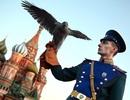 """Chuyện ít biết về đội """"cảnh vệ bay"""" bảo vệ Điện Kremlin"""