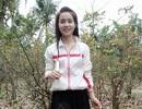 Vụ cô gái mất liên lạc ở Hà Nội: Công ty xuất khẩu lao động nói gì