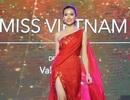 Người đẹp Hoa hậu hoàn vũ 2016 thướt tha, kiêu sa trên sàn diễn thời trang