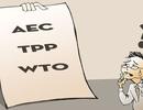 """TPP hay câu chuyện """"cầu ở người không bằng cầu ở mình"""""""