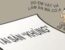 """Cuộc """"ra quân tổng lực"""" thanh, kiểm tra tài sản của bà Kim Thoa"""