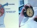 Melatonin, đồng hồ sinh học và giấc ngủ