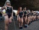 """Cuộc thi """"hoa hậu vòng 3"""" hút khách đến Brazil"""
