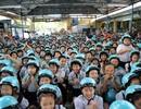 """Gần 600 học sinh TPHCM """"chấm điểm"""" chất lượng mũ bảo hiểm"""