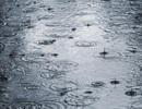 Trong tương lai sẽ mưa nhiều hơn