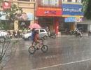 Dân mạng háo hức chia sẻ những hình ảnh cơn mưa đầu tiên sau đợt nắng nóng kỷ lục