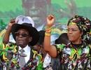 Đệ nhất phu nhân Zimbabwe đối mặt với nguy cơ bị truy tố sau khi chồng từ chức