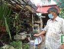 """Hà Nội: Ô nhiễm, khu dân cư """"đứng ngồi không yên"""" lo sốt xuất huyết"""