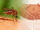 Vi rút Zika gây rối loạn thần kinh như thế nào?