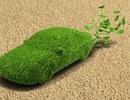 Nấm men biến đổi đường thực vật thành dầu mỏ
