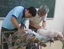 Xét tuyển đại học ngành Thú y hệ chính quy