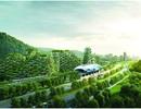"""Sắp có """"thành phố rừng"""" đầu tiên trên thế giới"""