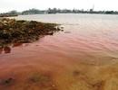 Sở TN&MT: Dải nước biển màu đỏ là do tảo nở hoa