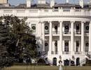 Đệ nhất phu nhân Mỹ lệnh chặt cây 200 tuổi ở Nhà Trắng