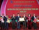 Hà Nội: Hoài Đức đón nhận Huyện đạt chuẩn Nông thôn mới